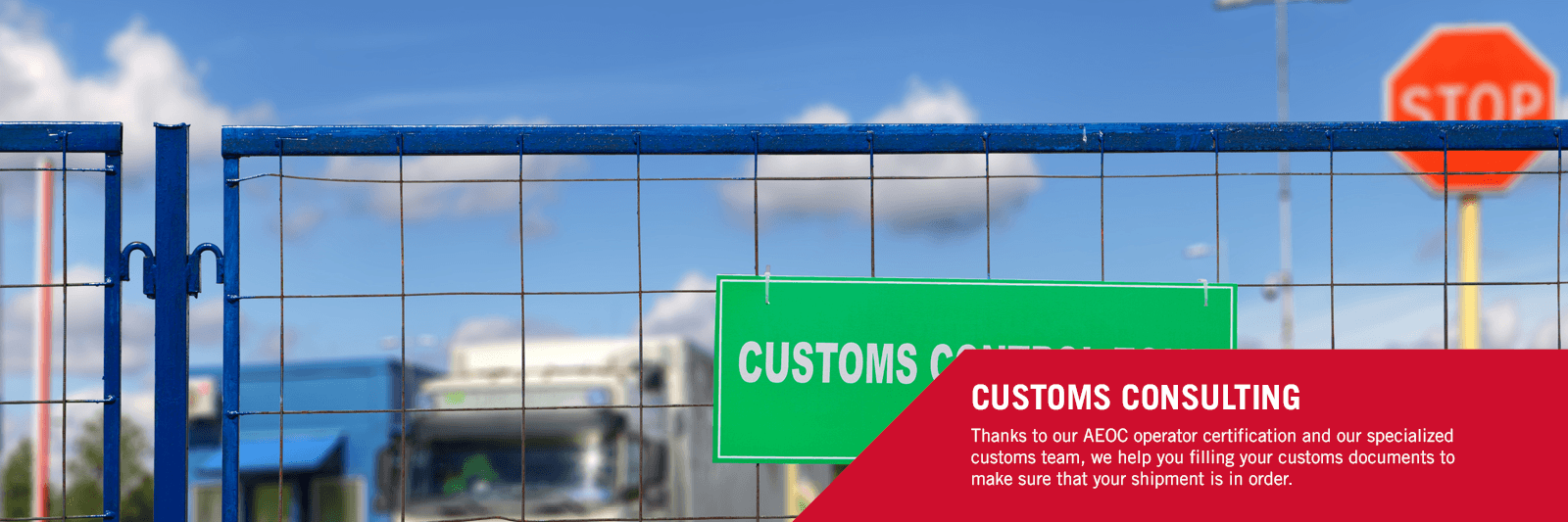 Customs consulting 1